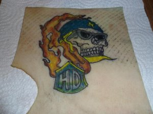 tattoo pics 2261.jpg