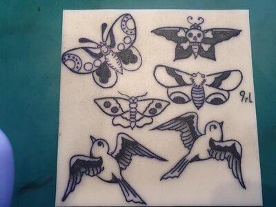 Sparrow & Butterlies shading.jpg