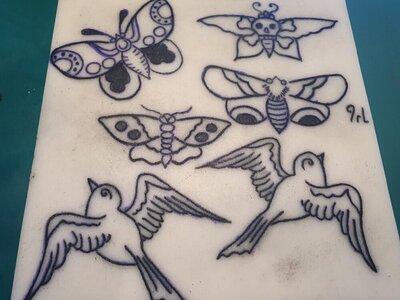 Sparrow 2.jpg