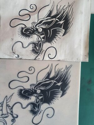 Dragon Comaparison.jpg